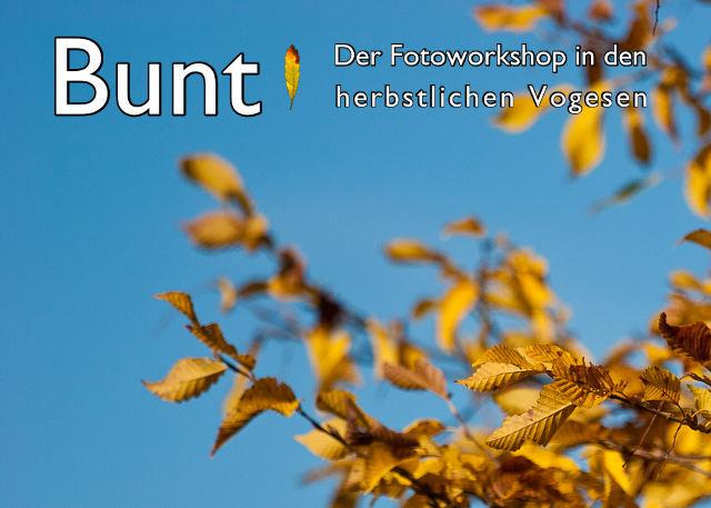 Flyer von Bunt! - Der Fotoworkshop in den herbstlichen Vogesen mit Link zur Infoseite