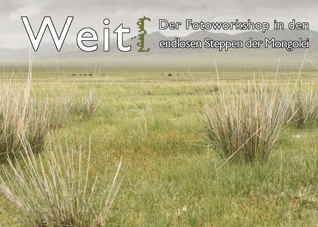 Flyer von Weit! - Der Fotoworkshop in den endlosen Steppen der Mongolei mit Link zur Infoseite